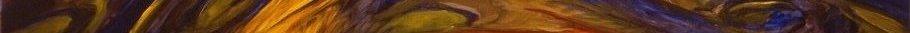 bannière sauvage beauté,71x910